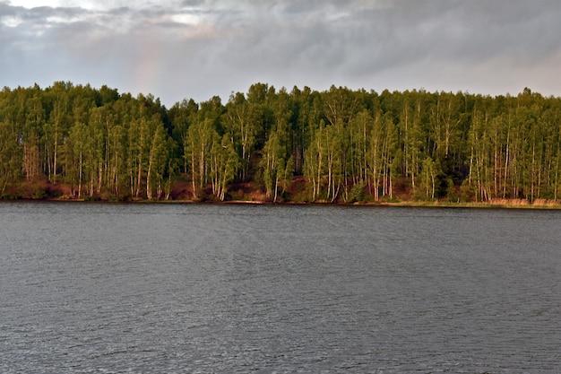 Forêt au bord de la rivière au coucher du soleil