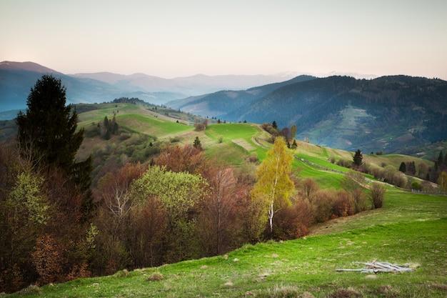 Forêt d'automne sur le col de montagne