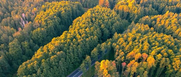 Forêt d'automne à feuilles caduques, vue aérienne, motif ou texture.