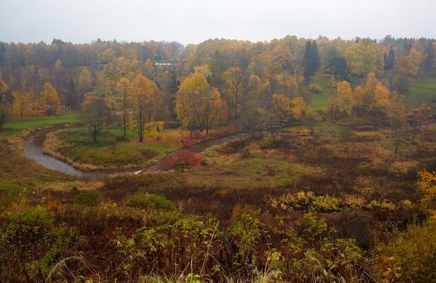 Forêt d'automne et rivière courbe