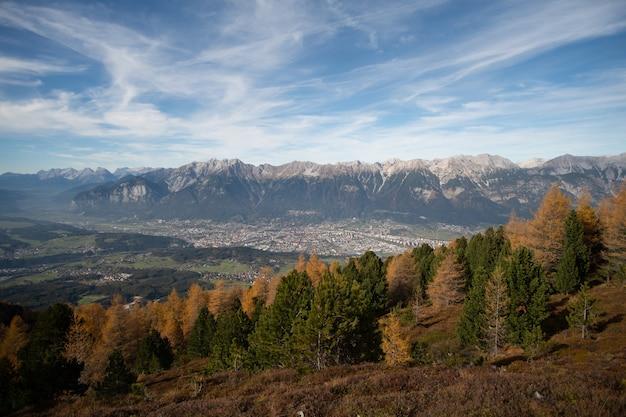 Forêt sur chaîne de montagnes