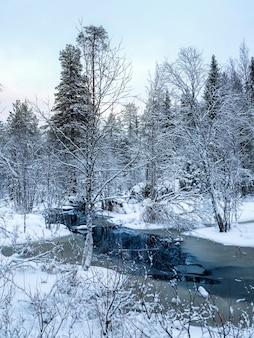 Forêt du nord enneigée d'hiver avec rivière un jour polaire.