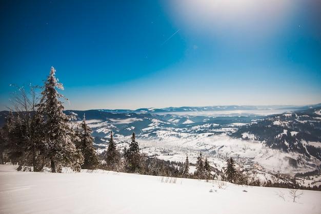 Forêt d'épinettes d'hiver avec vue sur les montagnes