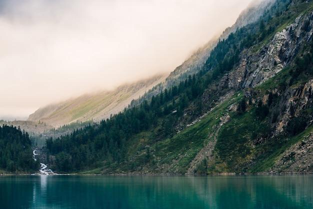 Forêt fantomatique près du lac de montagne tôt le matin