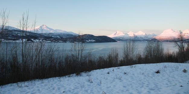 Forêt d'hiver sur la rivière au coucher du soleil