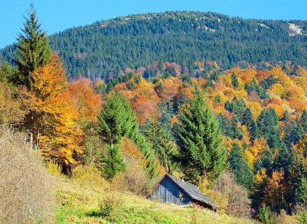 Forêt de montagne d'automne ensoleillée et cabanon en bois, à flanc de montagne
