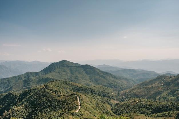 Forêt de montagne et ciel bleu