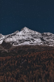 Forêt et montagne couverte de neige