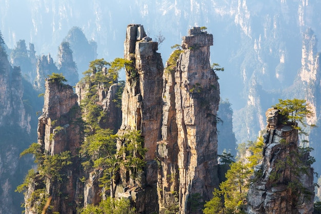 Forêt nationale de zhangjiajie en chine