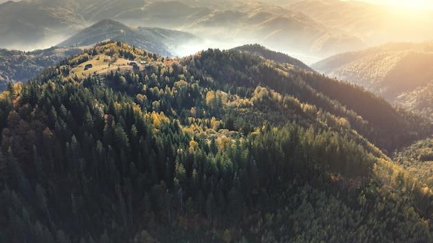 Forêt de pins du soleil au sommet de la montagne arbres d'automne aérien au brouillard de brume personne paysage nature mont vert