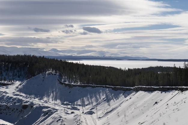 Forêt de pins sur fond de collines enneigées