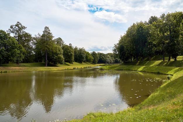 Forêt pittoresque et environnement nordique pittoresque de rivière