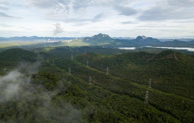 Forêt pluviale dans le parc national. forêt mixte colorée enveloppée de brouillard matinal sur une belle journée d'automne