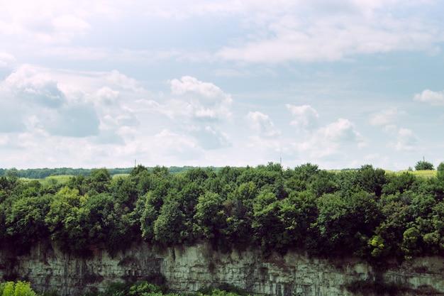 Forêt sur le rocher et beau ciel dramatique