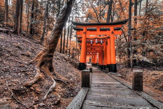 Forêt avec structure japonaise