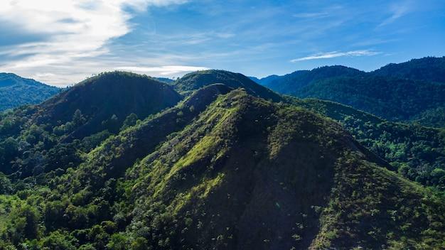 Forêt tropicale dans le district d'aceh besar, province d'aceh