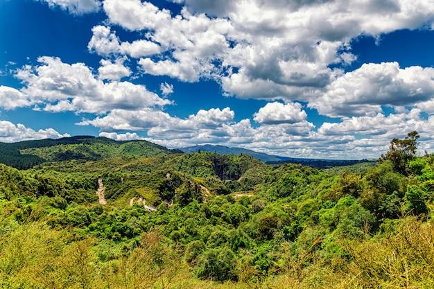 Forêt tropicale de la vallée volcanique de waimangu par une journée ensoleillée