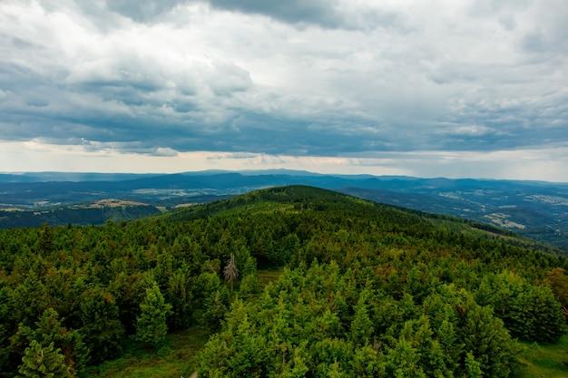 Forêt verte dans les montagnes des sudètes, pologne