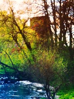 Forêt verticale à la rivière bokeh background hd