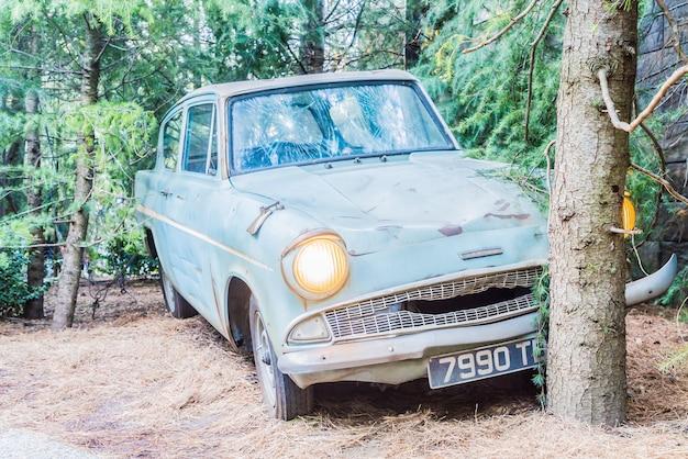 Forêt avec une voiture abandonnée