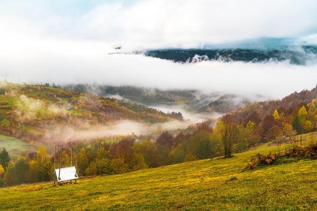 Forêts denses colorées dans les montagnes vertes et chaudes des carpates couvertes d'un épais brouillard gris