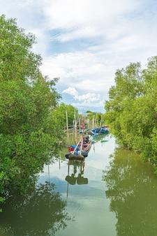 Forêts de mangrove et petits bateaux de pêche