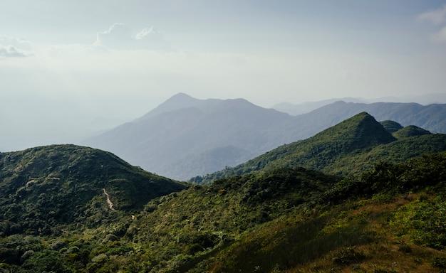 Forêts riches ciel bleu avec des crêtes de montagne.