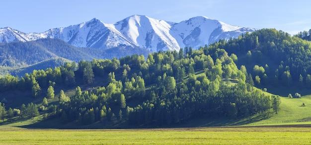 Forêts vertes et prairies, sommets enneigés et ciel bleu