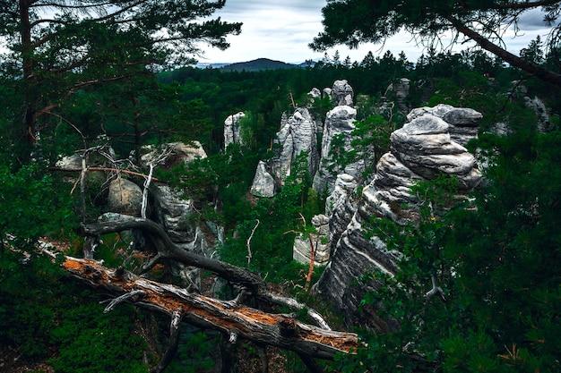 La formation de montagne des rochers de prachov en république tchèque