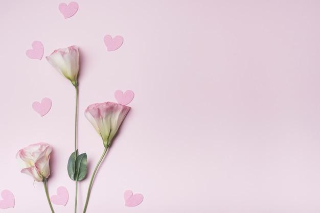 Forme de coeur avec des fleurs d'eustoma sur fond rose