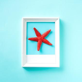 Forme d'étoile de mer sur un cadre