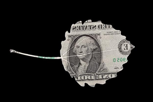 Forme de feuille de dollar américain isolé sur fond noir
