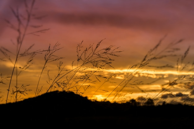 Forme de montagne silhouette au coucher du soleil.