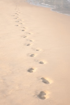 Des formes dans le sable