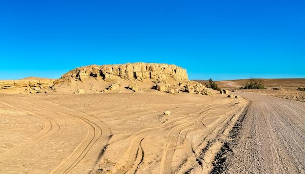 Fossiles de baleines dans le désert d'ocucaje, pérou