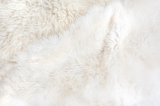 Fourrure blanche se bouchent