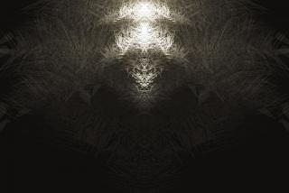 Fractales abstraites