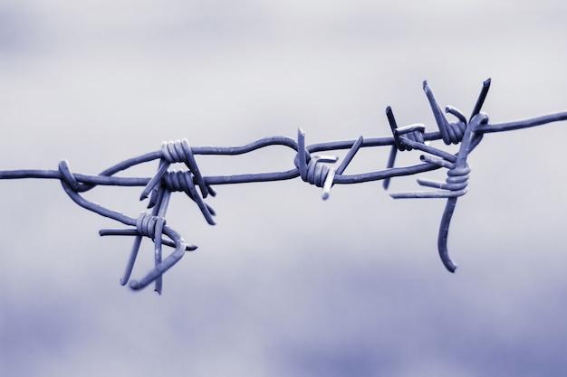 Fragment de la clôture en fil de fer barbelé. l'entrée et la sortie sont interdites. restriction de mouvement