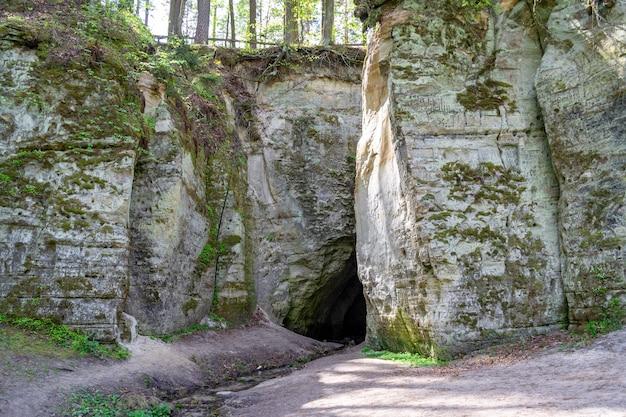 Fragment de falaise de grès big elita avec grotte dans la forêt par beau printemps ou au début d'une journée ensoleillée