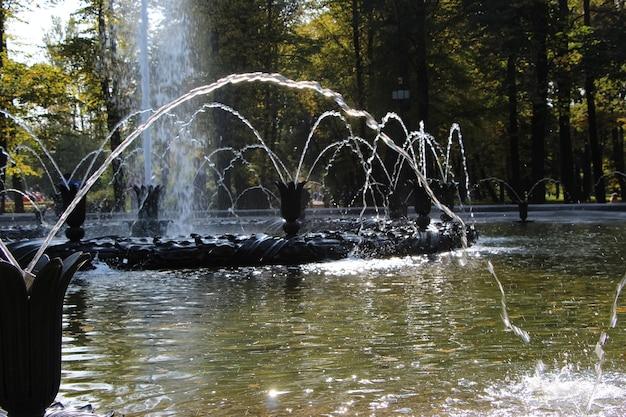 Fragment d'une fontaine éclabousse et gouttes d'eau sur fond d'arbres dans le parc
