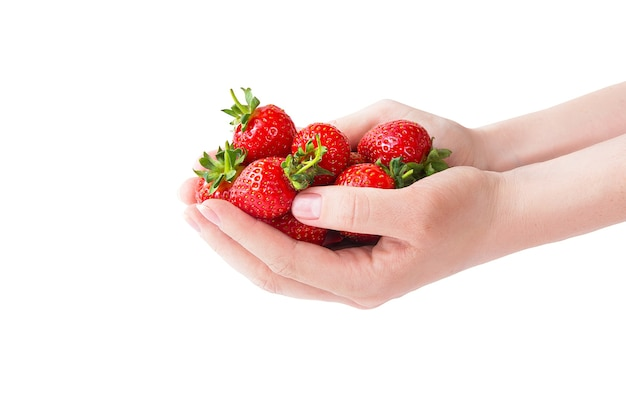 Fraise bio de produits locaux mûrs. jeune femme tenant des tas de fruits rouges à mains nues. aliments diététiques végétaliens sains et frais. fond de fruits. fraises isolés sur fond blanc