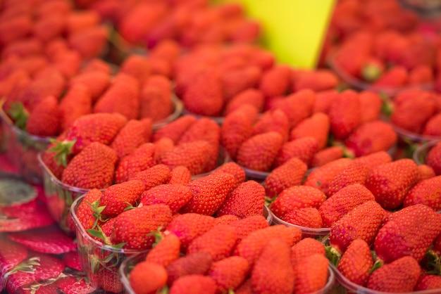 Fraises biologiques naturelles dans des boîtes à un marché de producteurs