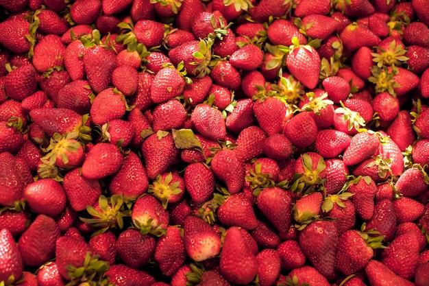 Fraises rouges fraîches au marché aux légumes