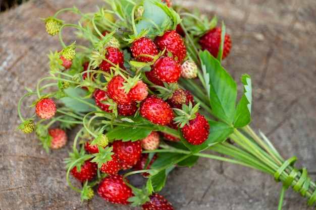 Les fraises sont allongées sur une souche dans la forêt. fraises mûres sur un gros plan de fond en bois. baies sauvages rouges juteuses et feuilles dans l'herbe dans la forêt d'été. bouquet de fraises