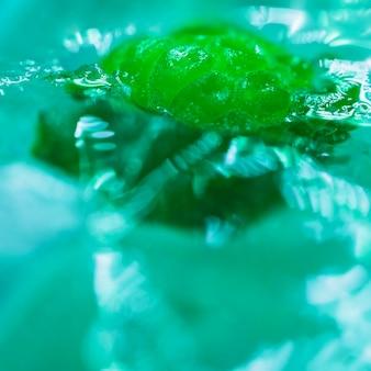 Framboise congelée