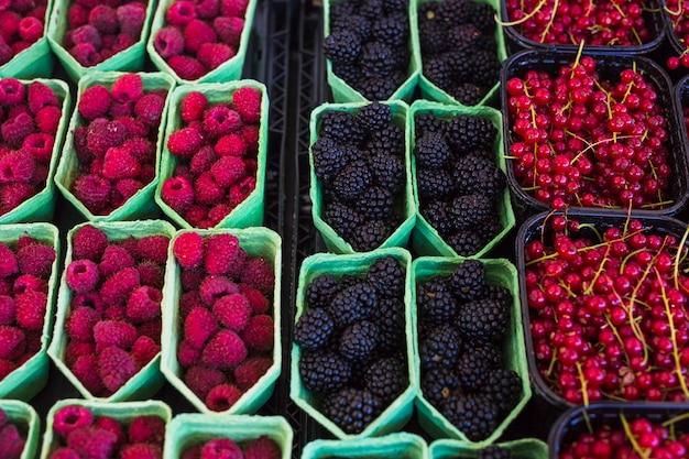 Framboises mûres et sucrées; fraises et groseilles dans la vitrine