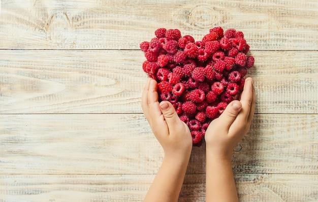 Les framboises sont entre les mains d'un enfant en forme de coeur.