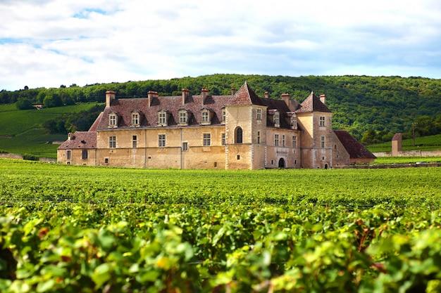 Français vignoble chateau