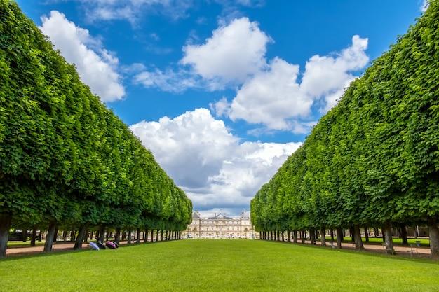 France. paris d'été. allée du jardin du luxembourg donnant sur le palais. des nuages
