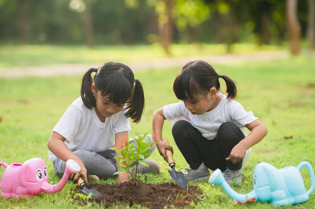 Un frère asiatique plantant un jeune arbre sur un sol noir ensemble pour sauver le monde dans le jardin le jour de l'été. planter un arbre. concept de loisirs d'enfance et de plein air.